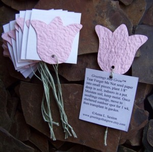 Plantable Favors from Greetings That Grow (Etsy) $5 for 10 tags